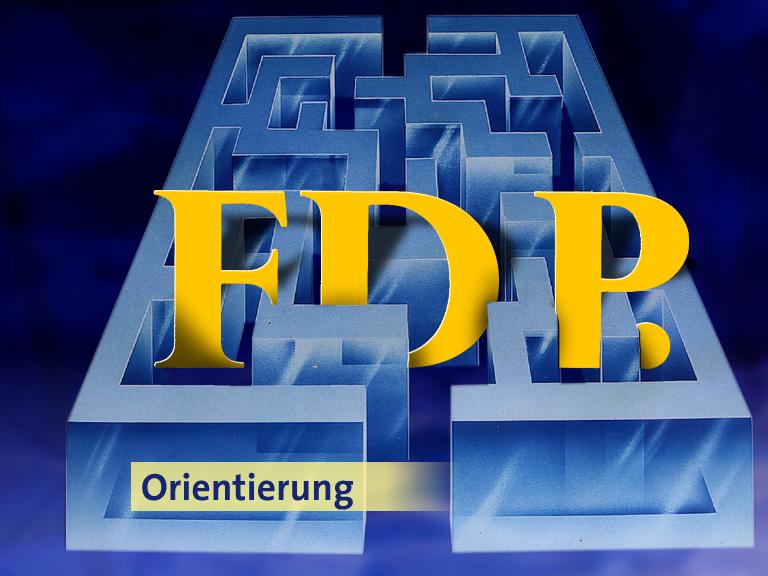 FDP Labyrimth