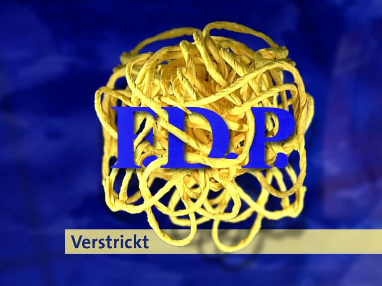 FDP verstrickt