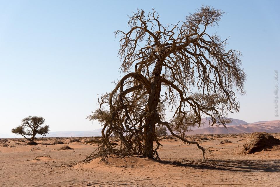 Namibia Landschaften